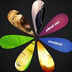 Flower Style FlashMoto CMS template