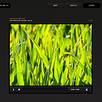 So simple video gallery FlashMoto CMS template