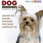 Dog breeders facebook template flash