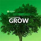 Green Business Flash Site