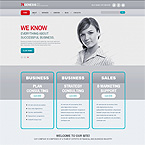 System Success Web Template
