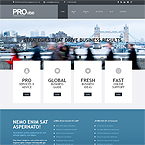 Provise Financial Advisor Wordpress Theme
