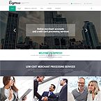 Express Credit Template