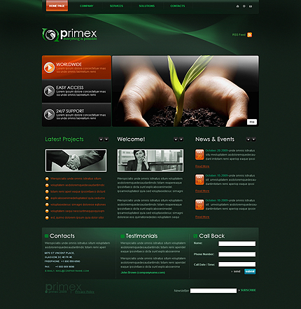 Reliable business CMS flash template