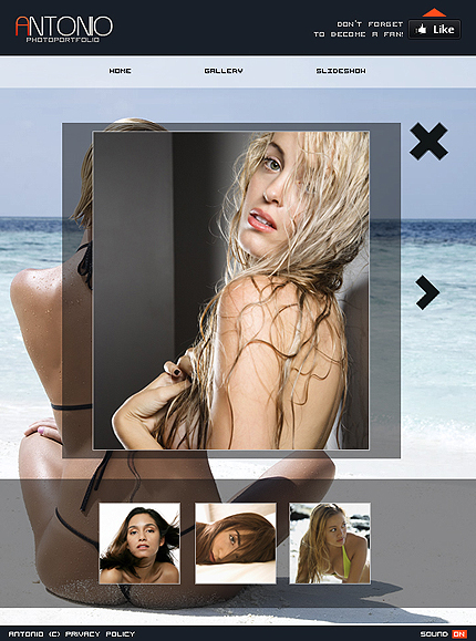 Facebook Flash Exquisute Template from FlashMint