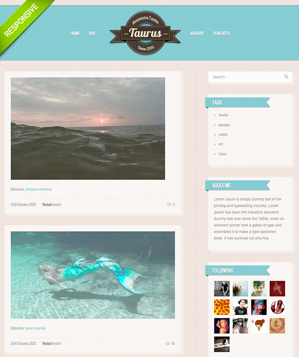 Premium Responsive Thumblr Theme