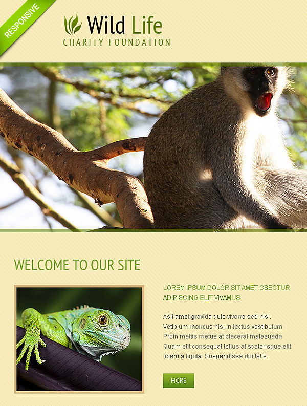 Animals Template For Joomla